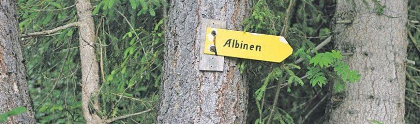 Albien